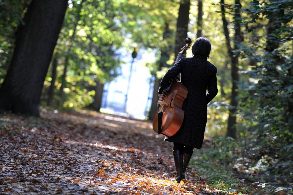 barbara pfeifer - musikerin